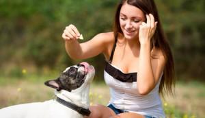 dog food debate