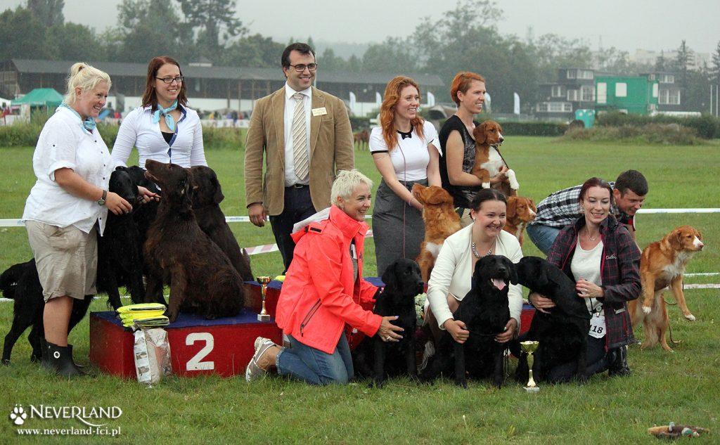FCI Group 8 Final at Sopot Dog Show