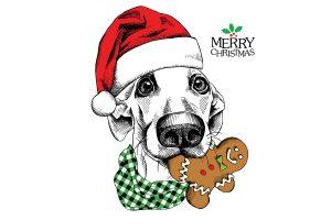 christmas doggie image